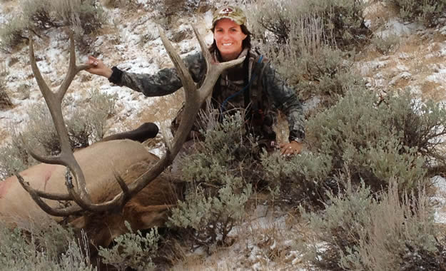 Colorado Elk Hunting is a Top Choice for All Levels of