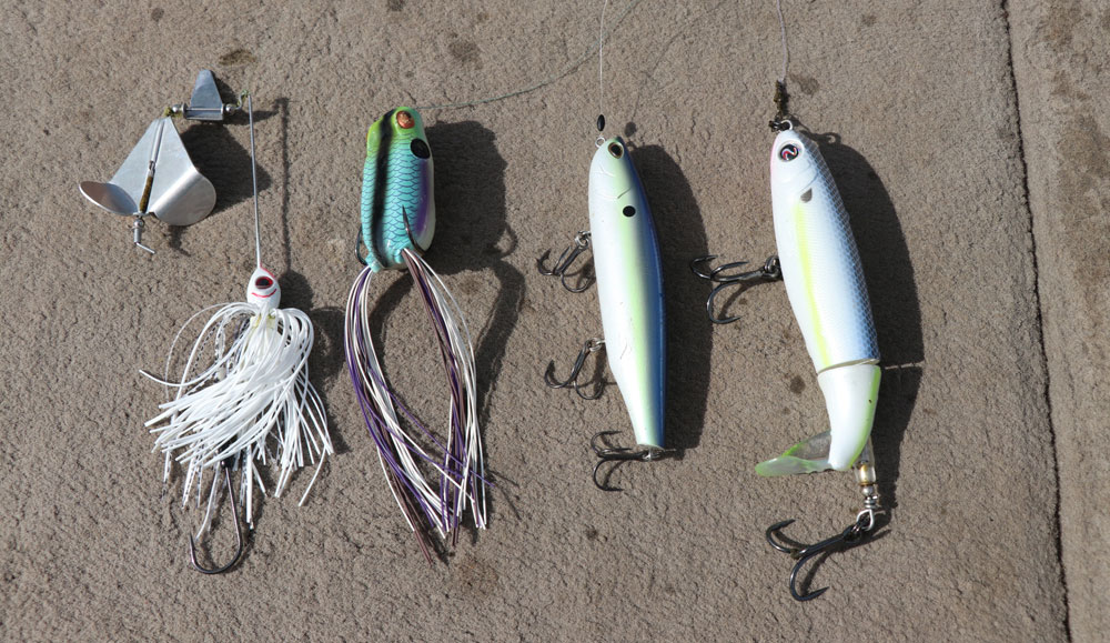 4 topwater bass baits for success