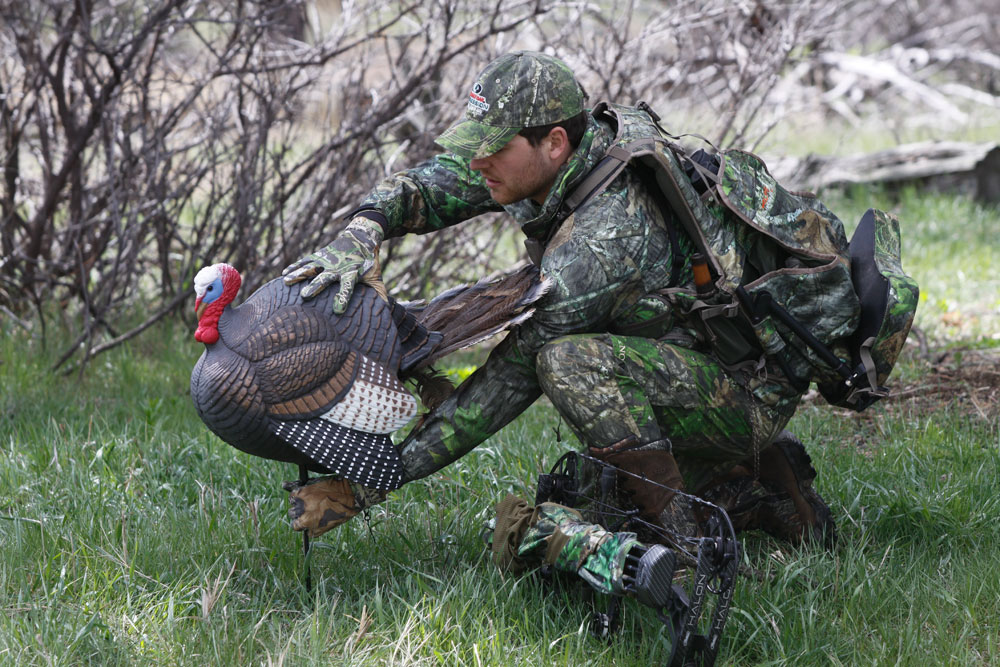 bowhunting turkeys decoy