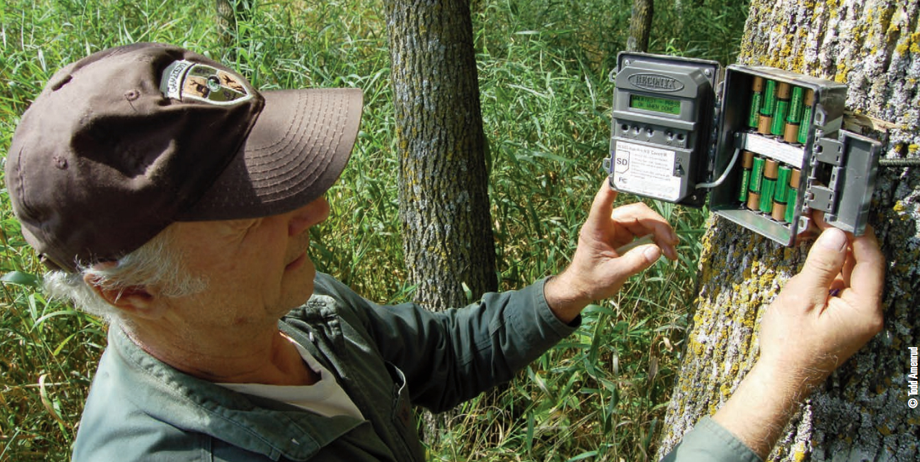 Gamekeeper Checking Trail Camera on Property Line