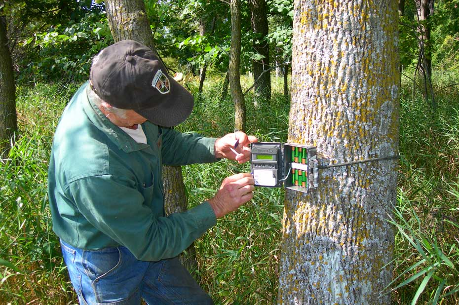checking trail camera batteries