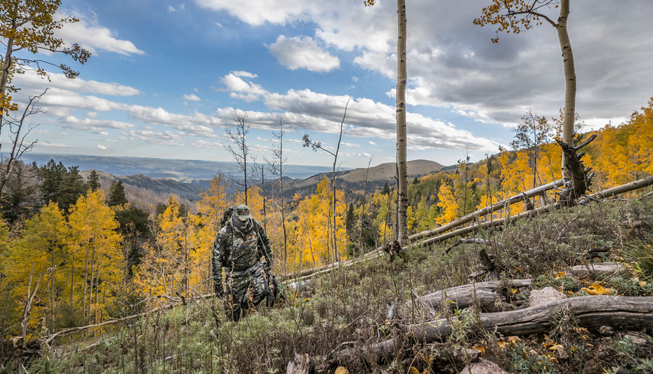 elk hunting in mountain country