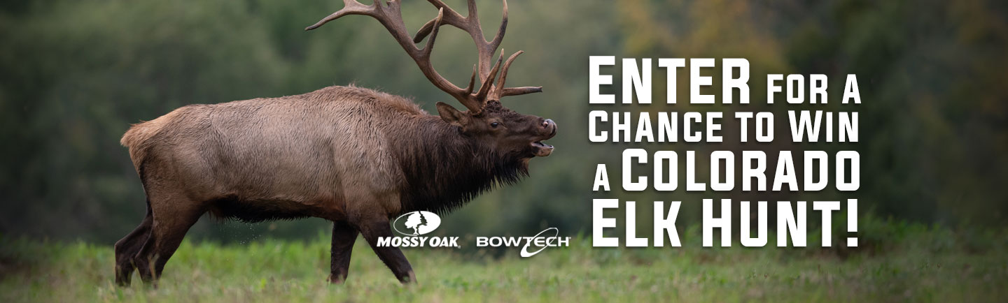 Win and Elk Hunt