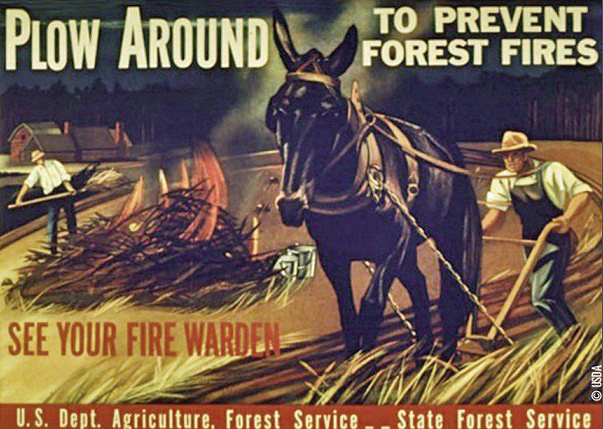 Forest Service ad