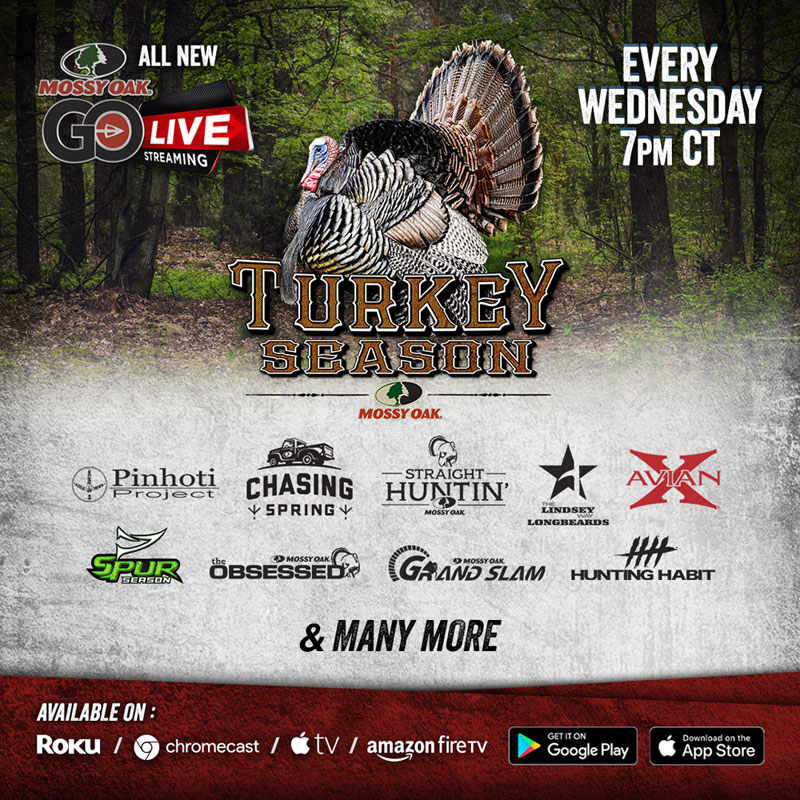 Mossy Oak Go Live turkey season
