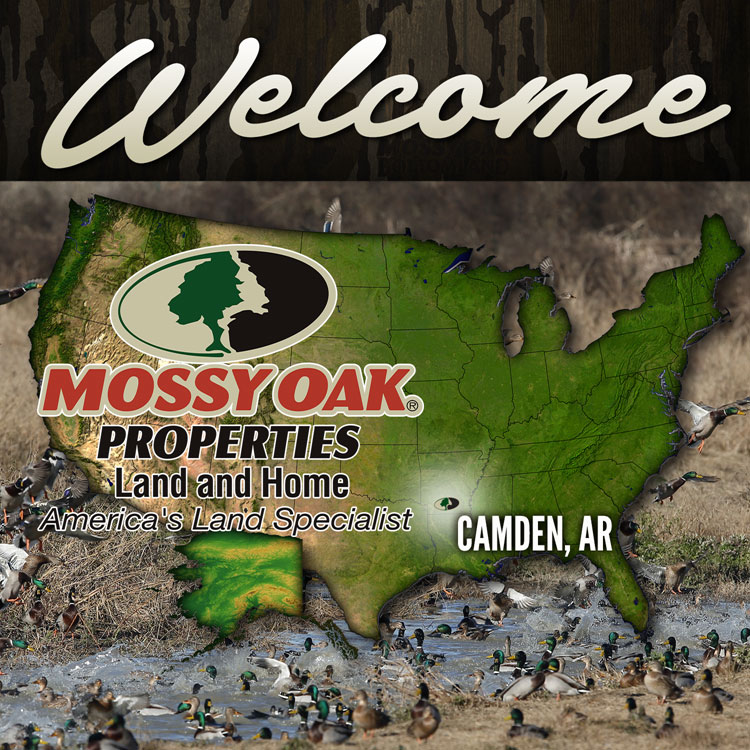Mossy Oak Properties Arkansas