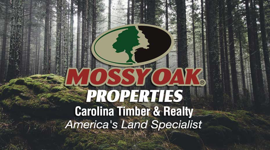 Mossy Oak Properties Carolina Timber