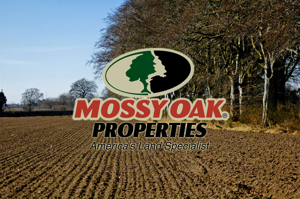 Mossy Oak Properties Land Report
