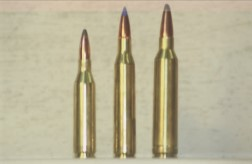 Remington Winchester cartridges