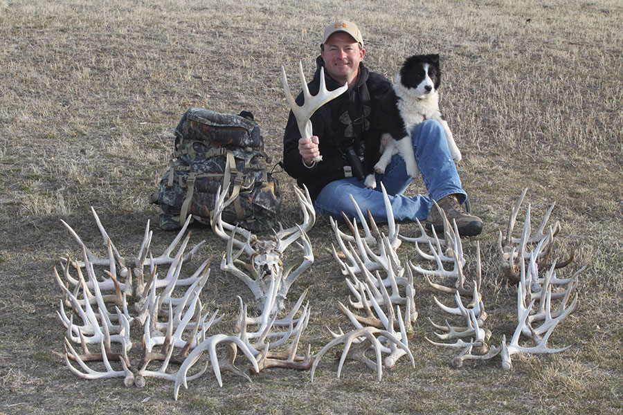 Successful Shed Hunting