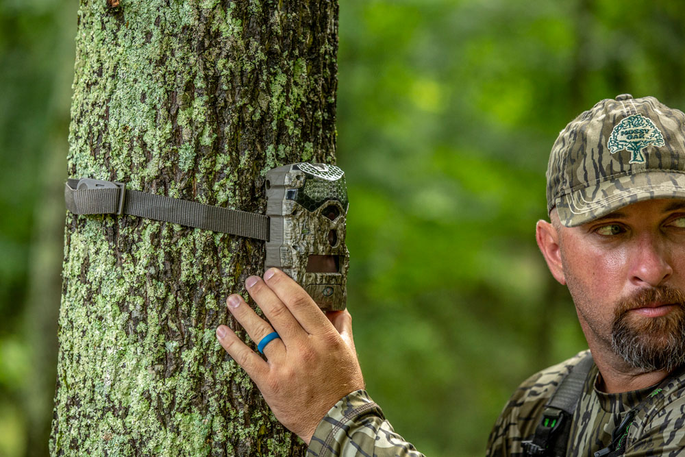 trail camera placement