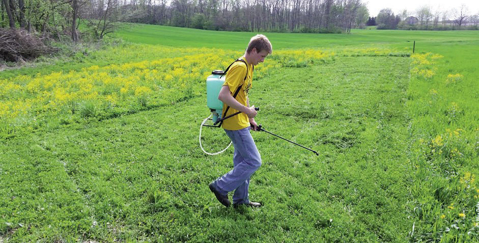 backpack spraying field