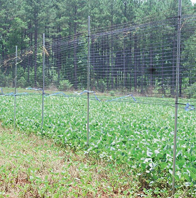 food plot fence