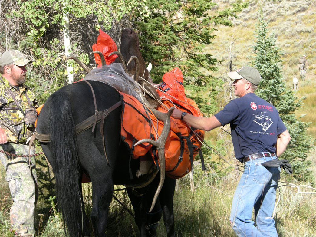 packing out elk meat on horseback