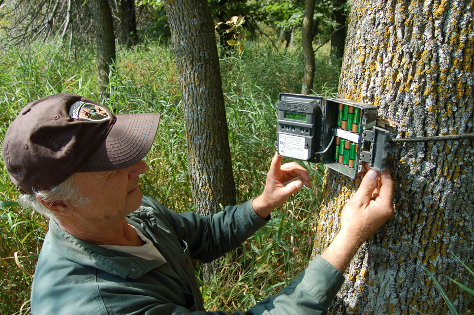 checking trail camera