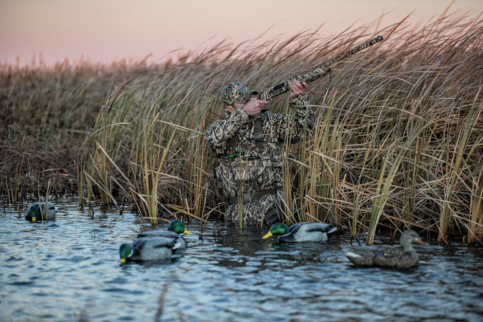 waterfowl shooting tips